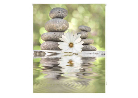 Zen-meditacion-Z-405359